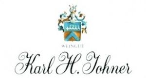 johner-logo-klein